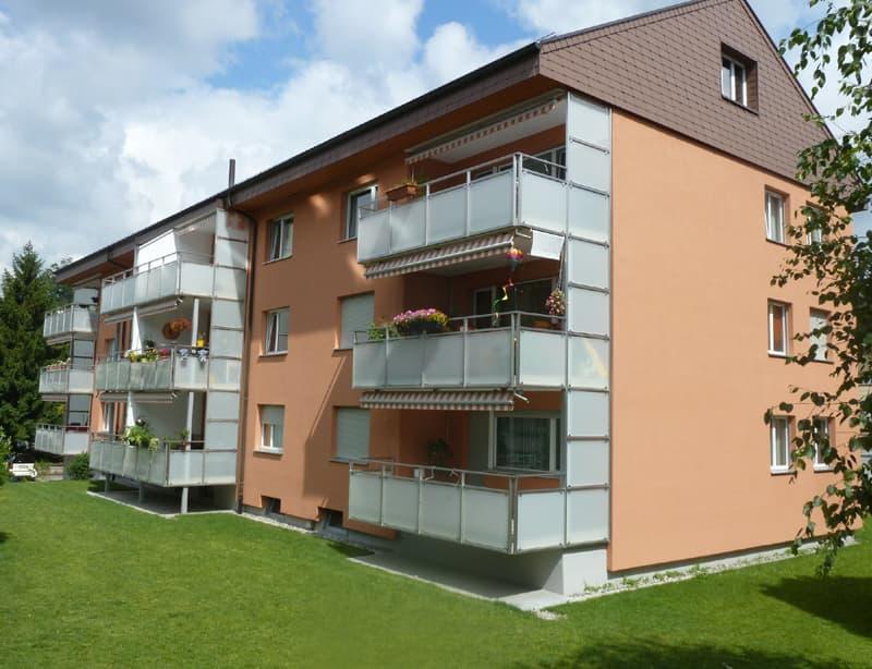 Toesstalstrasse 367