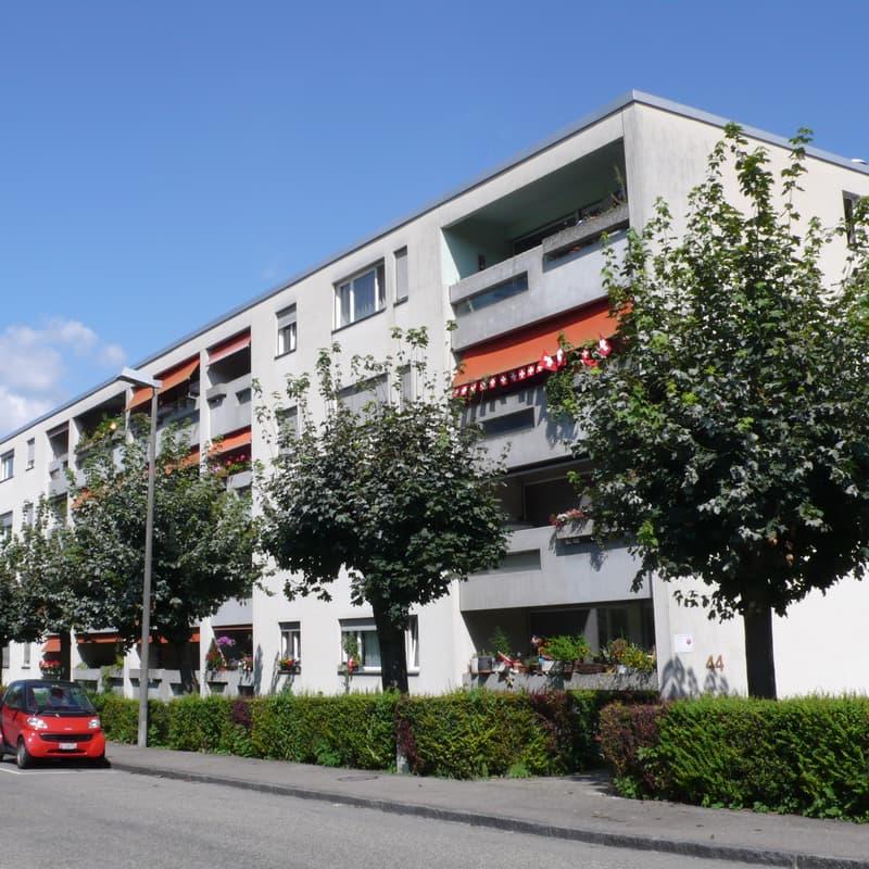 Binningerstrasse 44a