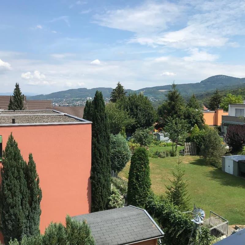 Krebsenbachweg 2