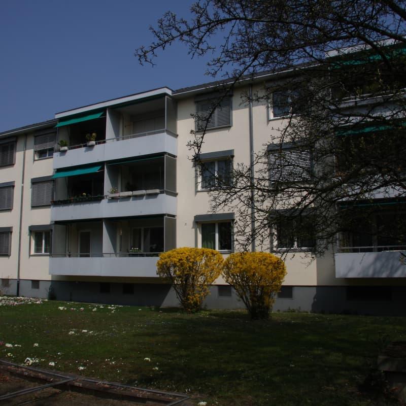 Baslerstrasse 203