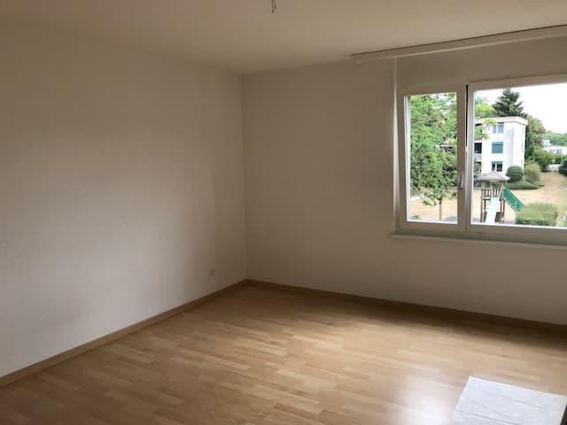 Altwiesenstrasse 46