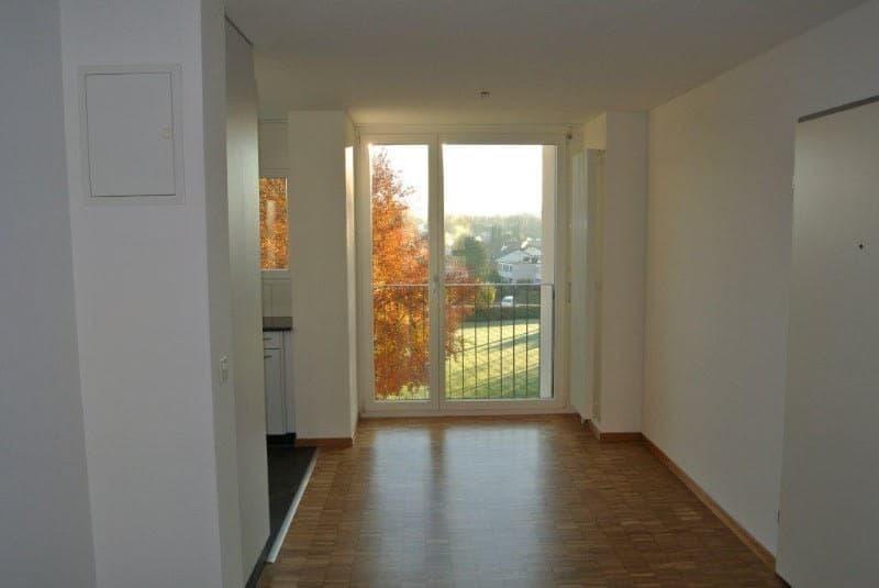 Guggenbühlstrasse 121