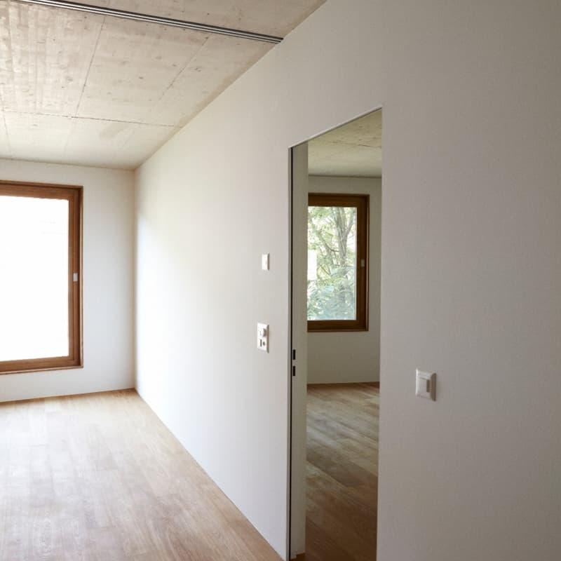 Arlesheimerstrasse 20
