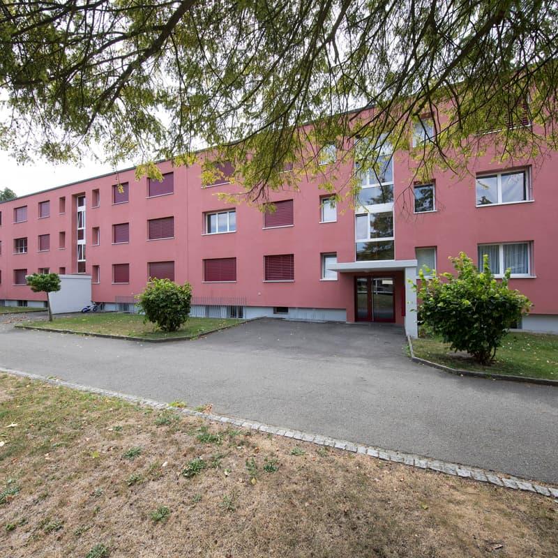 Höhefeldstrasse 23 (Aarepark)