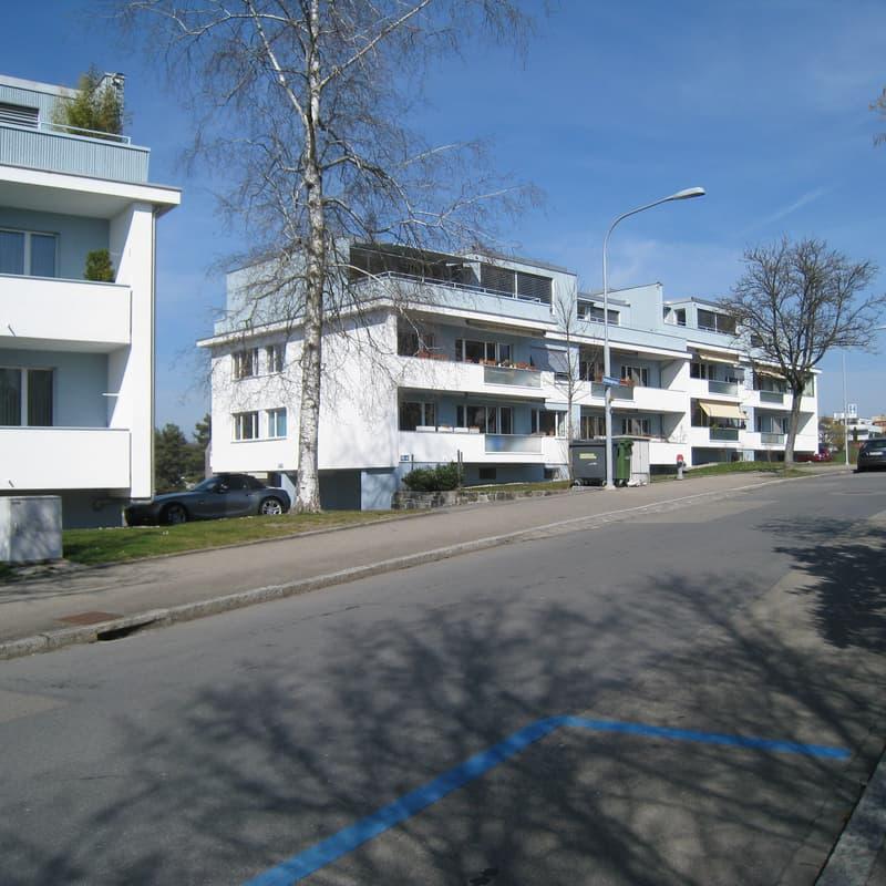 Oetlisbergstrasse 43