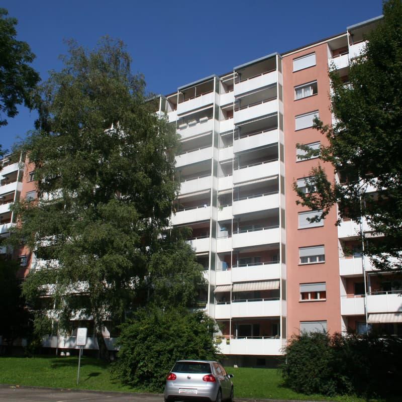 Hirzenbachstrasse 101