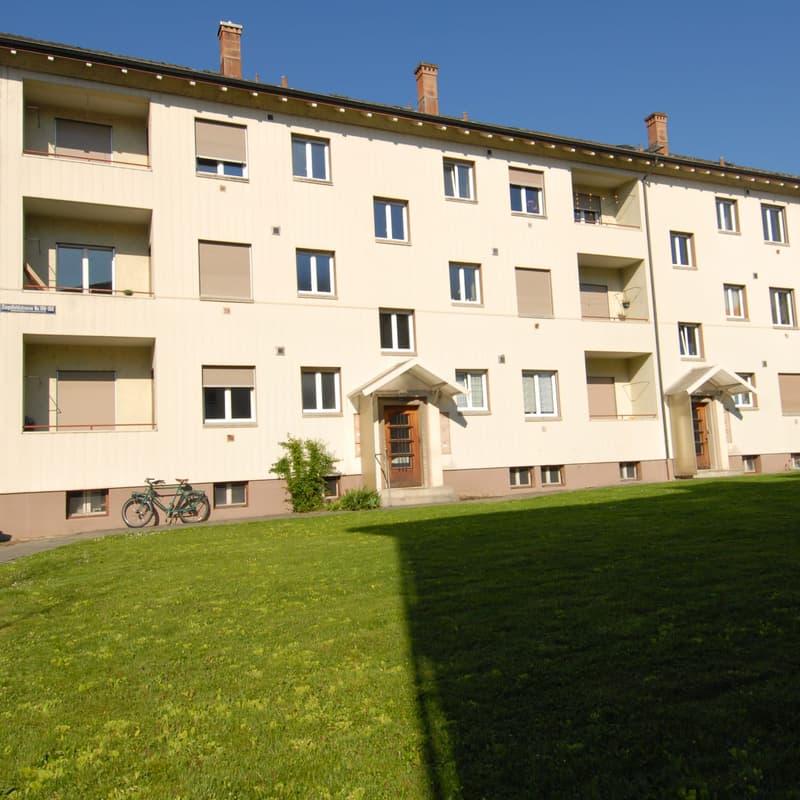 Ziegelfeldstrasse 106