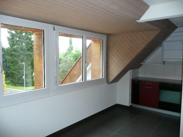 Kleindorfstrasse 113
