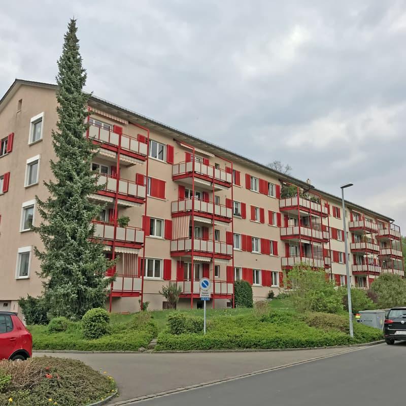 Chapfwiesenstrasse 12