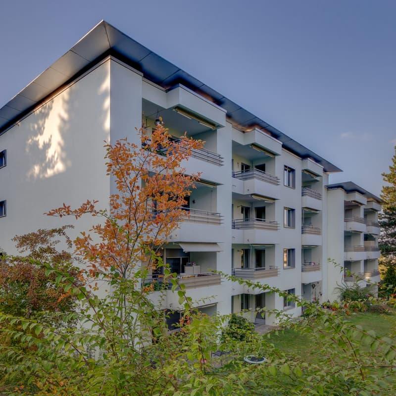 Schaufelweg 93
