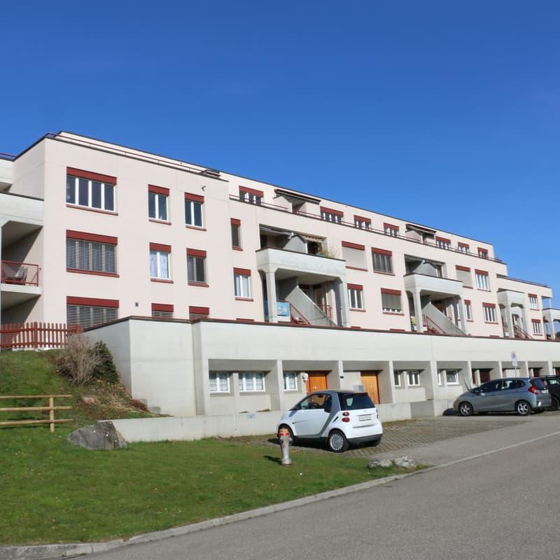 Neuhofstrasse 49