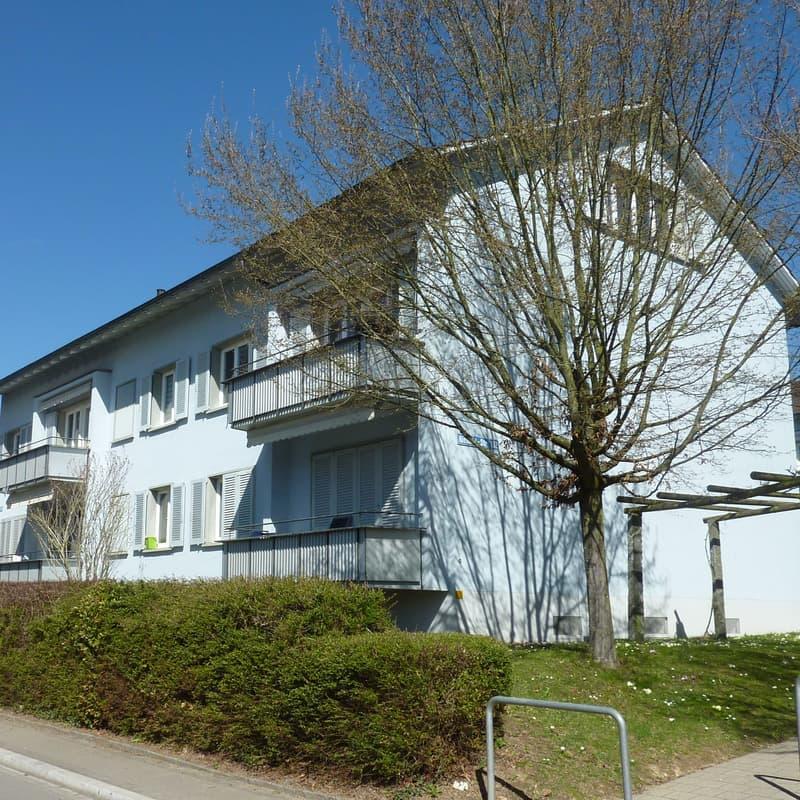 Riedhofstrasse 152