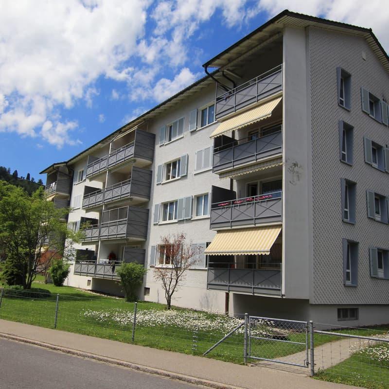 Grüenaustrasse 41