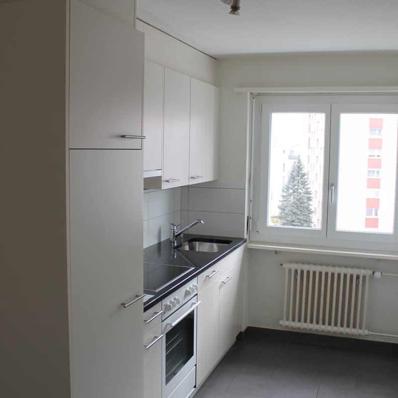 Oltnerstrasse 11