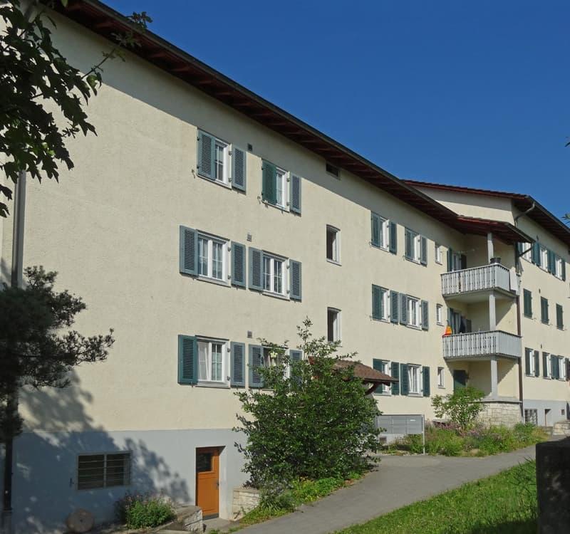 Fulachstrasse 253