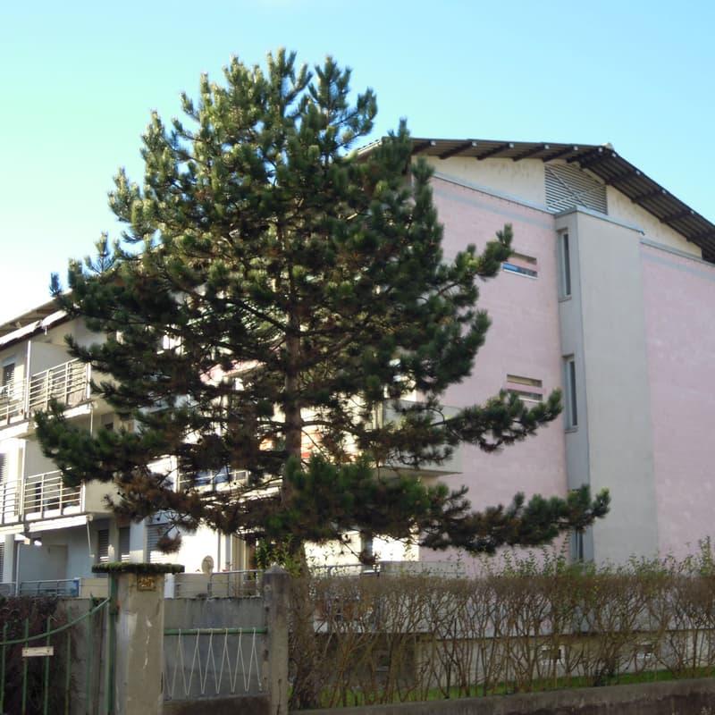 Rue des Prés-du-Lac 27