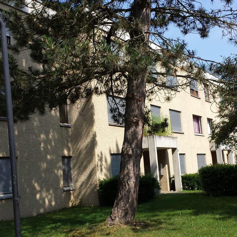 Butzenstrasse 22