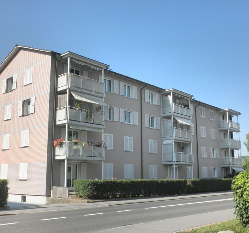 Hohenrainstrasse 19