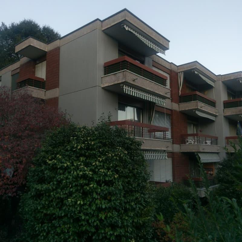 Sentiero Vinorum