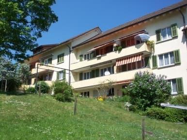 Hochstrasse 312