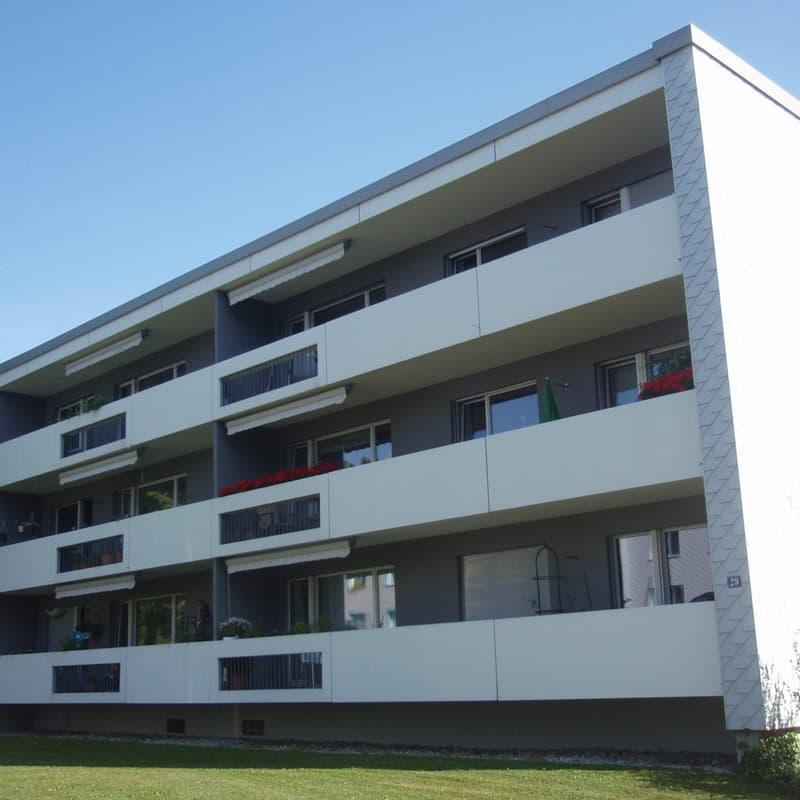 Rehbühlstrasse 29