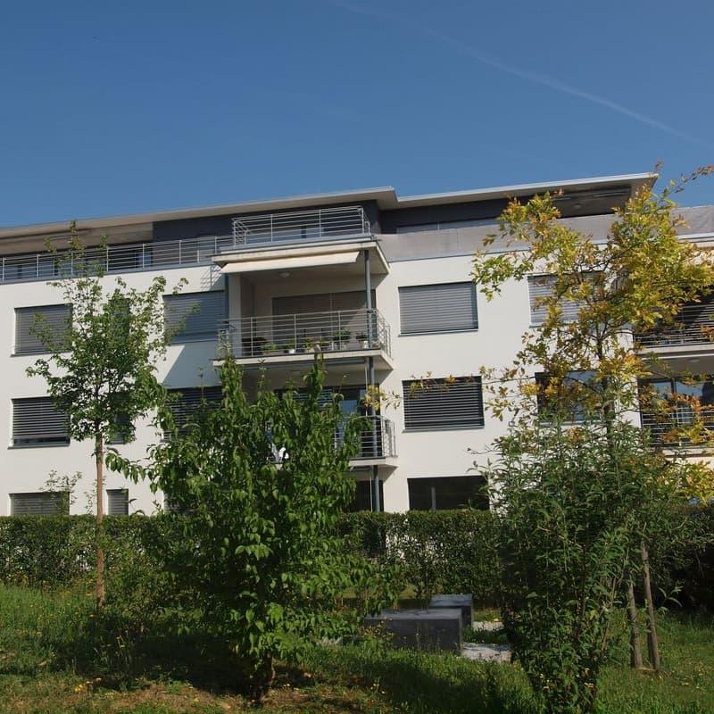 Breitfeldstrasse 15