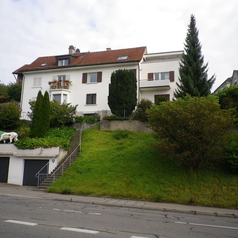 Winzerstrasse 60