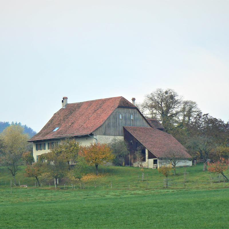 Ch. de Perey-de-Ban 1