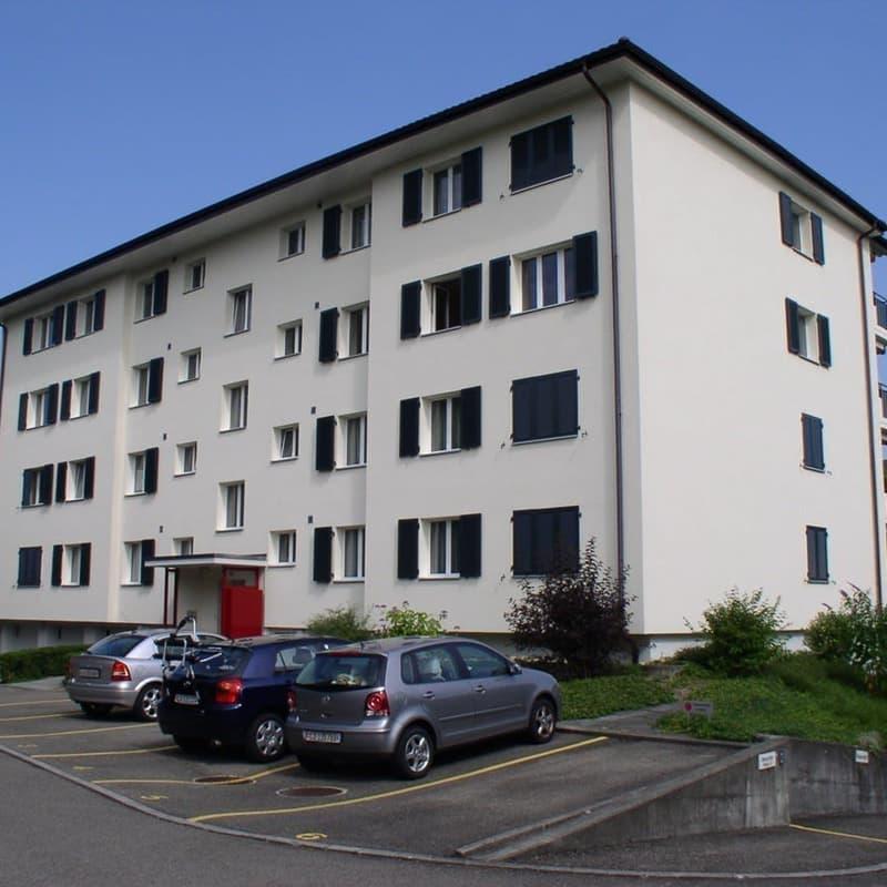Buchfeldring 3