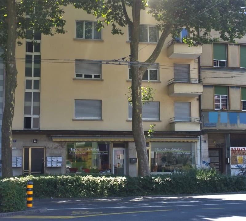 G.F. Heilmannstrasse 2a