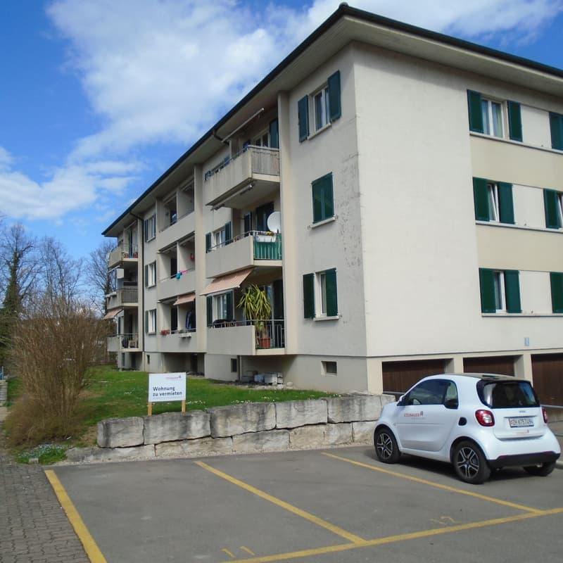 Rheinsfelderstrasse 36