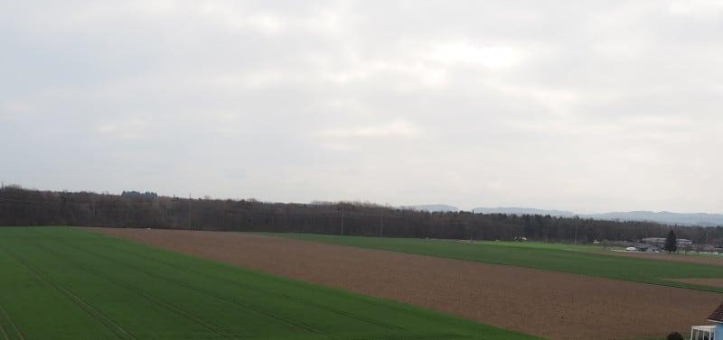 Veilchenweg 40