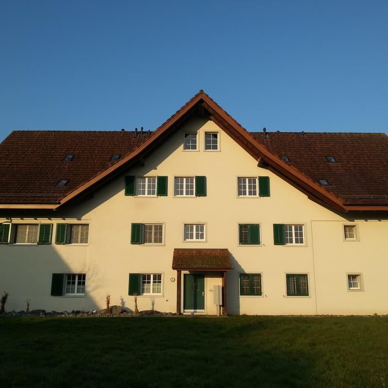 Hochfelderstrasse 17b