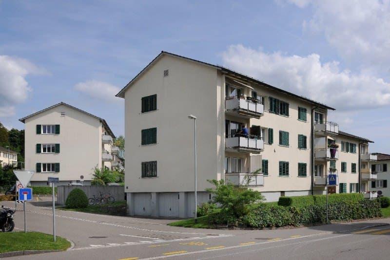 Hofwiesenstrasse 4