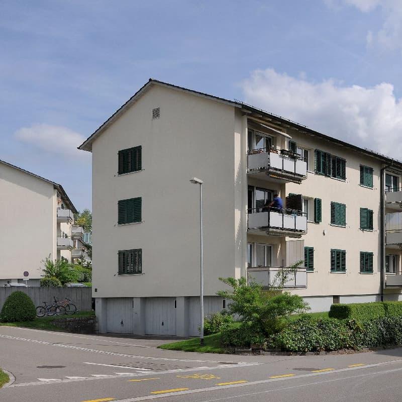 Hofwiesenstrasse 6