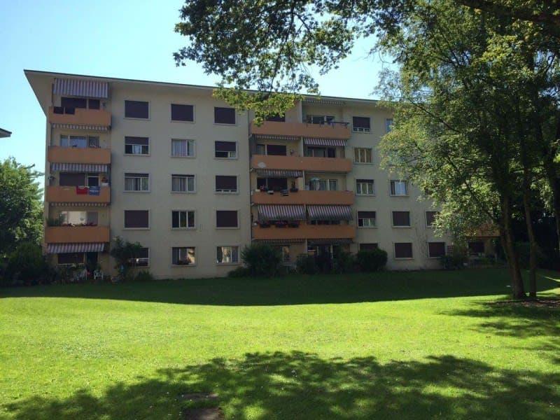 Schulstrasse 14