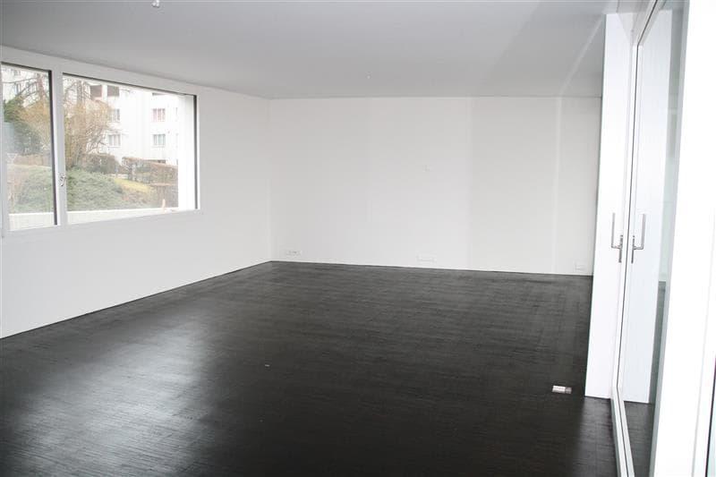 Heubachstrasse 47, 8810 Horgen