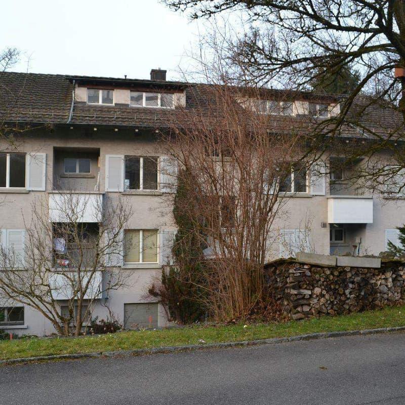 Steinbrüchelstrasse 1