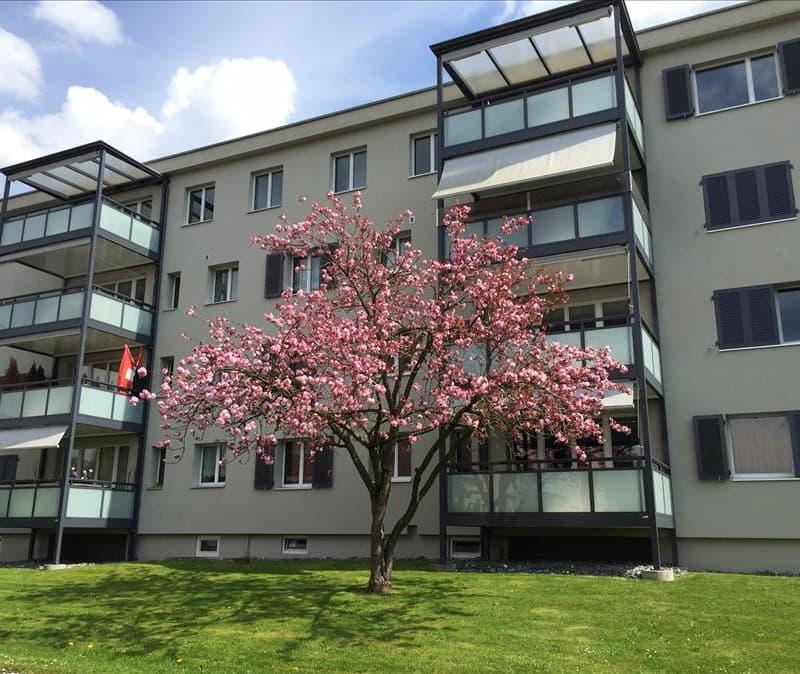 Wülflingerstrasse 288