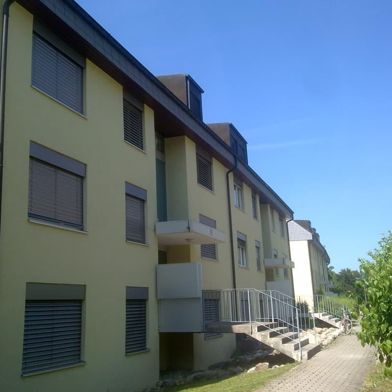 Grüningerstrasse 8
