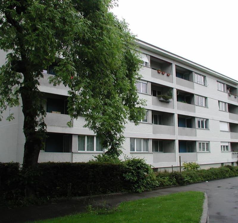 Tösstalstrasse 58