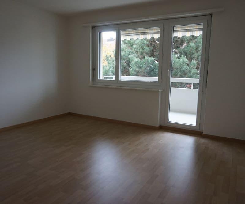 Wülflingerstrasse 356