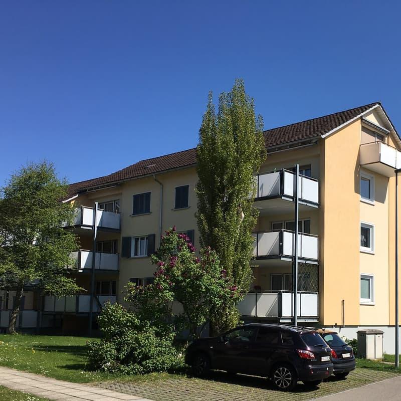 Mühlebachstrasse 18
