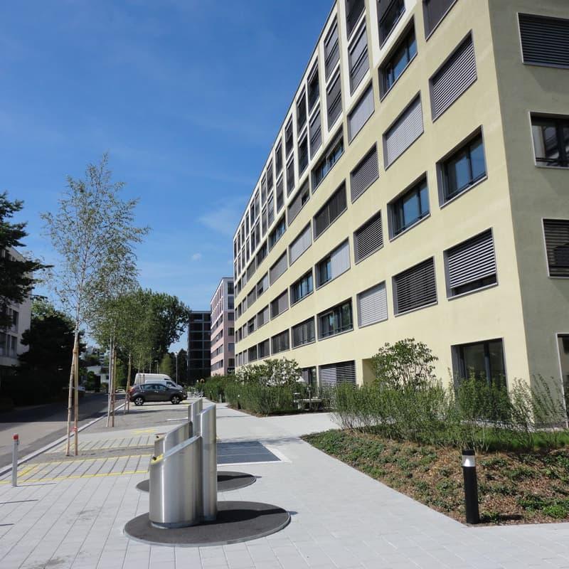 Arianestrasse 11