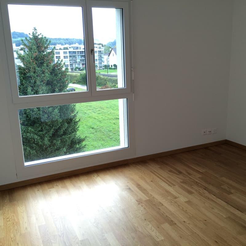 Binzstrasse 39
