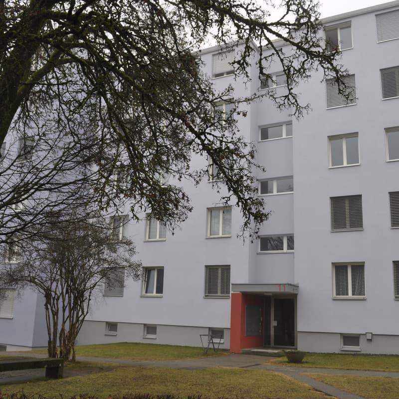 Falkenstrasse 11