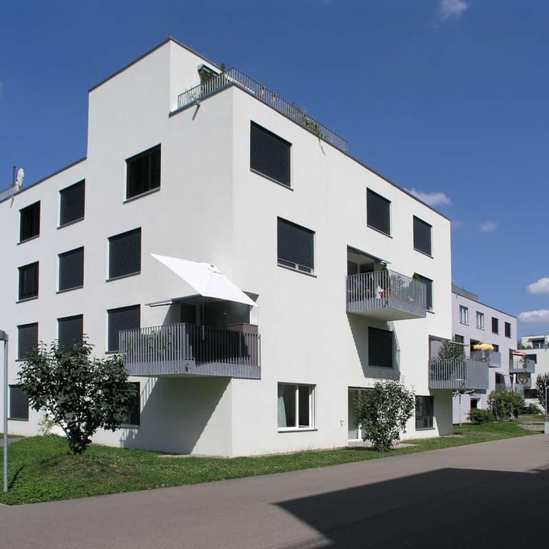 Roosstrasse 44b