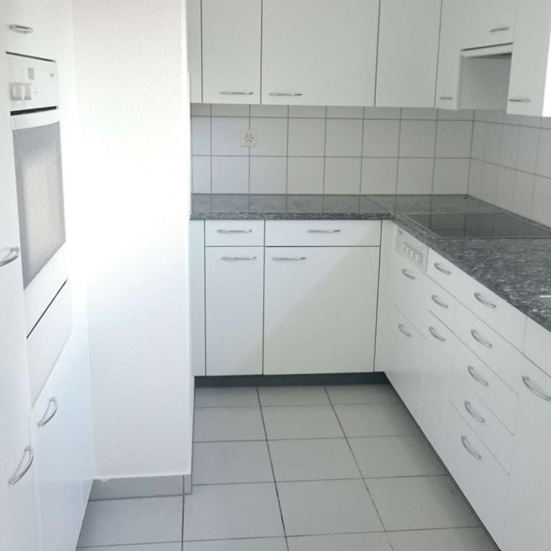 Lindenhof 3