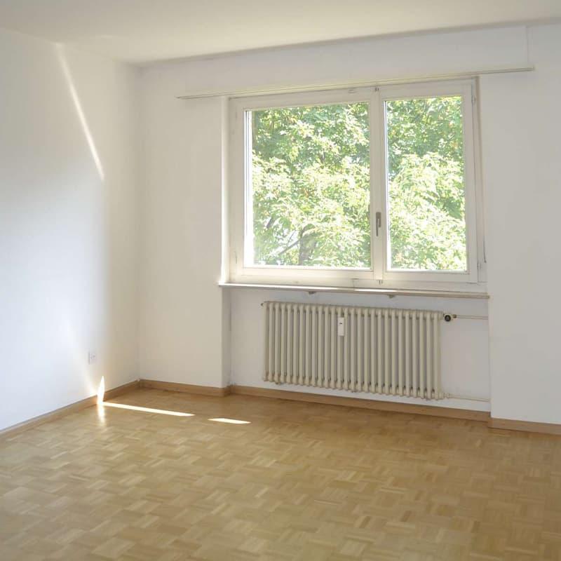 Baslerstrasse 195