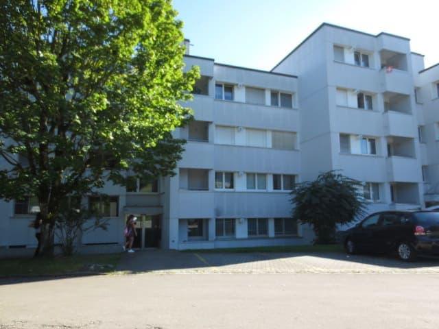 Baumackerstrasse 13